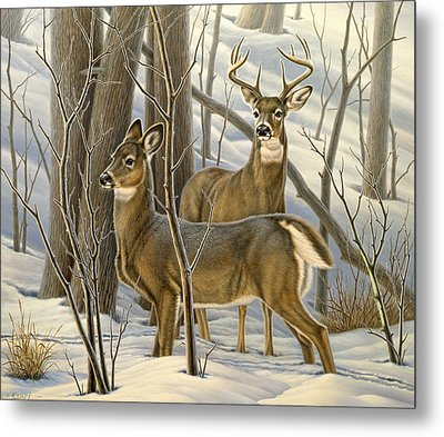 Ready - Whitetail Deer Metal Print by Paul Krapf