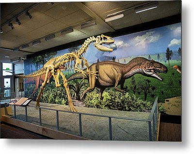 Reconstruction Of Allosaurus Metal Print by Jim West