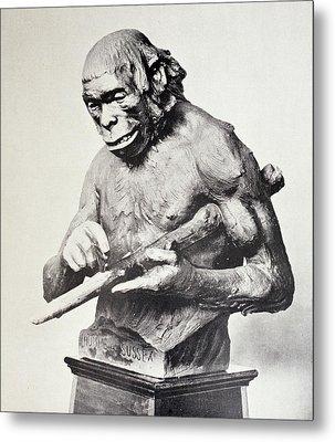 Reconstruction Of Piltdown Man Metal Print by Paul D Stewart
