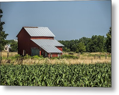Red Amish Barn And Corn Fields Metal Print by Kathy Clark
