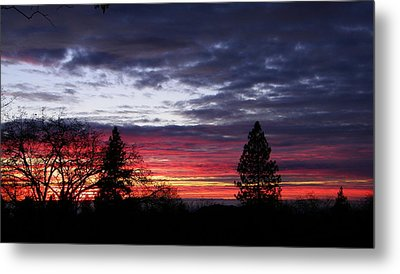 Red And Blue Metal Print by Tom Mansfield