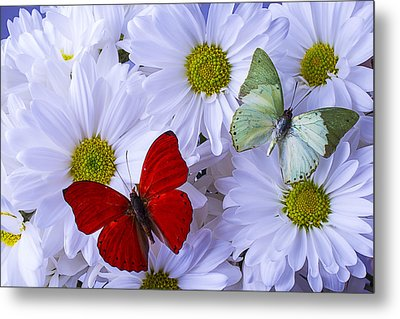 Red And Green Butterflies Metal Print