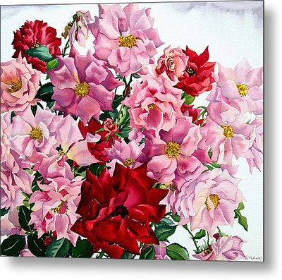 Red And Pink Roses Metal Print by Christopher Ryland