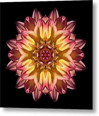 Red And Yellow Dahlia Iv Flower Mandala Metal Print