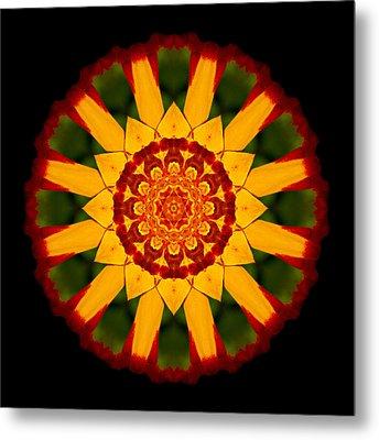 Red And Yellow Marigold V Flower Mandala Metal Print