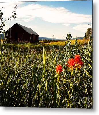 Metal Print featuring the photograph Red Barn by Meghan at FireBonnet Art