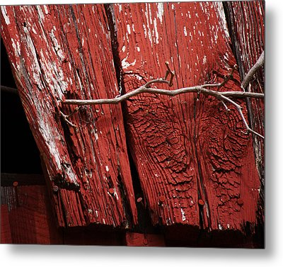 Metal Print featuring the photograph Red Barn Wood With Dried Vine by Rebecca Sherman