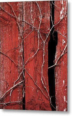 Metal Print featuring the photograph Red Barn Wood With Dried Vines by Rebecca Sherman