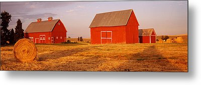 Red Barns In A Farm, Palouse, Whitman Metal Print by Panoramic Images