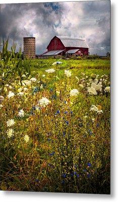 Red Barns In The Wildflowers Metal Print by Debra and Dave Vanderlaan