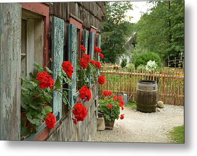 Red Beauties Metal Print