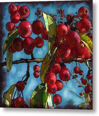 Red Berries Metal Print by Colleen Kammerer