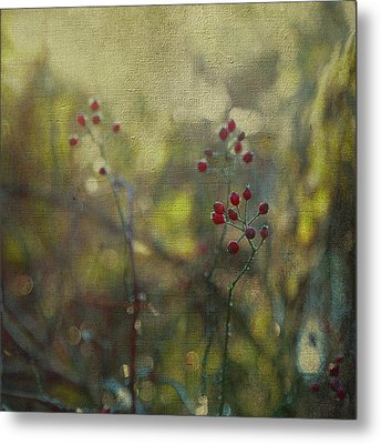 Red Berries On Green After Frost Metal Print by Brooke T Ryan