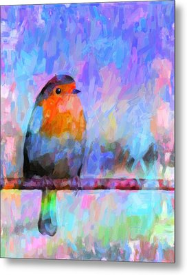 Red Breasted Robin Metal Print by Kenny Francis