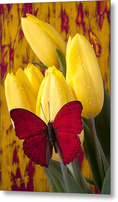 Red Butterfly Resting On Tulips Metal Print by Garry Gay