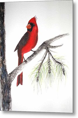 Metal Print featuring the painting Red Cardinal by Sibby S