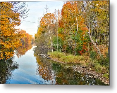Metal Print featuring the photograph Red Cedar Fall Colors by Lars Lentz