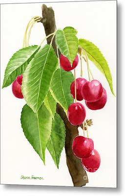 Red Cherries On A Branch Metal Print