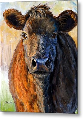 Red Cow Just Before Sunset Metal Print by Dottie Dracos