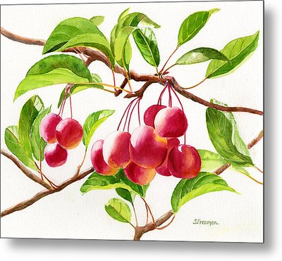 Red Crab Apples Metal Print by Sharon Freeman