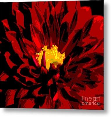 Red Dahlia Abstract Metal Print by Olivia Hardwicke