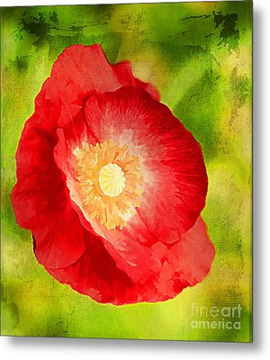 RED Metal Print by Darren Fisher
