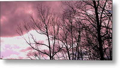 Metal Print featuring the photograph Red Dawn by Candice Trimble