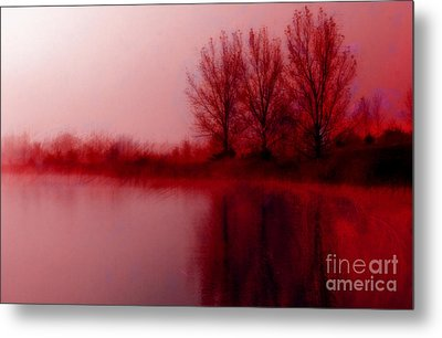Metal Print featuring the photograph Red Dawn by Julie Lueders