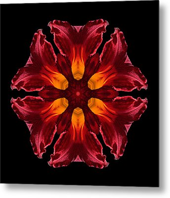 Red Daylily II Flower Mandala Metal Print by David J Bookbinder