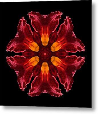 Red Daylily II Flower Mandala Metal Print