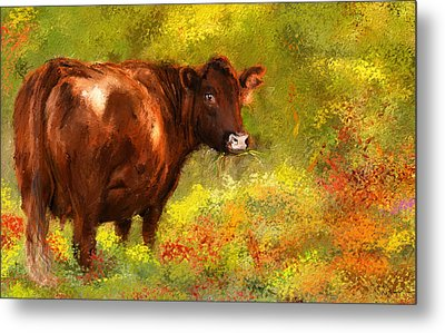 Red Devon Cattle - Red Devon Cattle In A Farm Scene- Cow Art Metal Print
