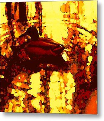 Red Duck Lake 6 Metal Print by Amy Vangsgard