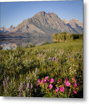 Metal Print featuring the photograph Red Eagle Mountain by Jack Bell