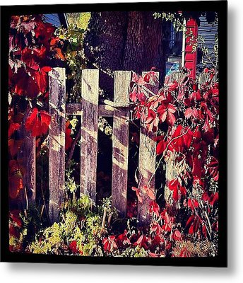 Red Entwined Fence  Metal Print by Marcin and Dawid Witukiewicz