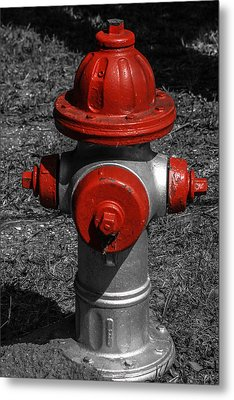 Red Fire Hydrant Metal Print by Steven  Taylor