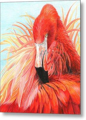 Red Flamingo Metal Print