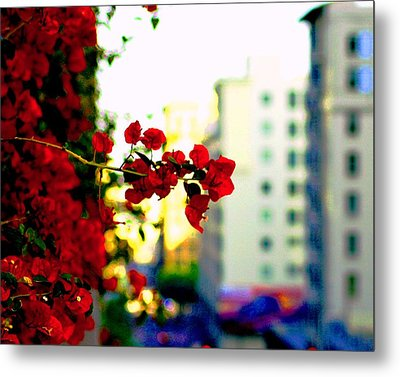 Red Flowers Downtown Metal Print by Matt Harang