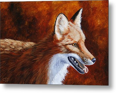 Red Fox - A Warm Day Metal Print by Crista Forest