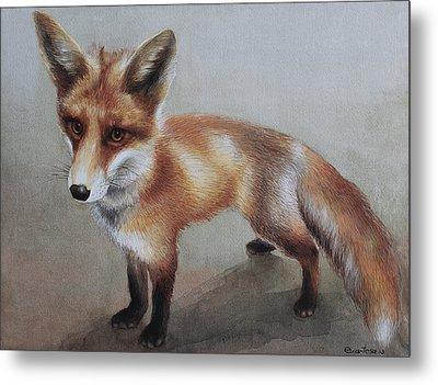 Red Fox Metal Print by Ezartesa