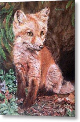 Red Fox Kit Metal Print by Nancy Andresen