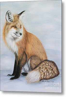 Red Fox Metal Print by Lena Auxier