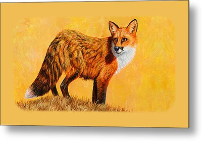 Red Fox Painting Iphone Case Metal Print by Crista Forest