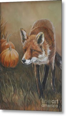 Red Fox With Pumpkins Metal Print by Charlotte Yealey