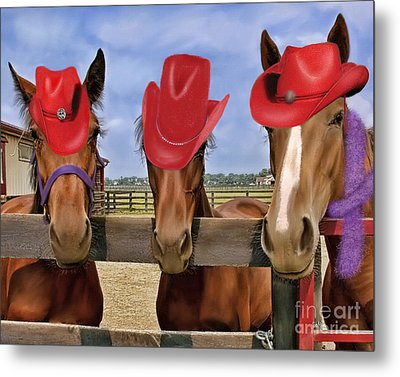 Red Hat Ladies Metal Print by Sami Martin