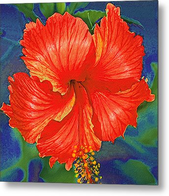 Red Hibiscus Flower Metal Print by Jane Schnetlage