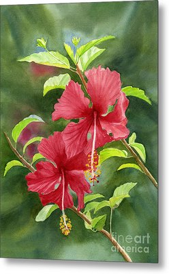 Red Hibiscus With Background Metal Print by Sharon Freeman