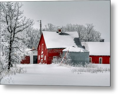 Red In White Metal Print by Larry Trupp