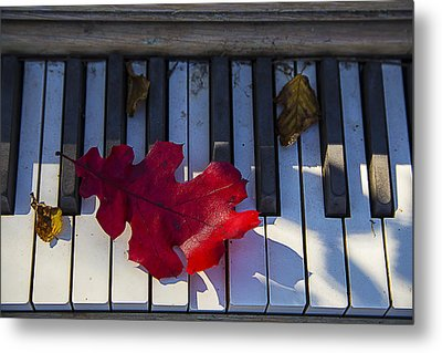 Red Leaf On Old Piano Keys Metal Print by Garry Gay