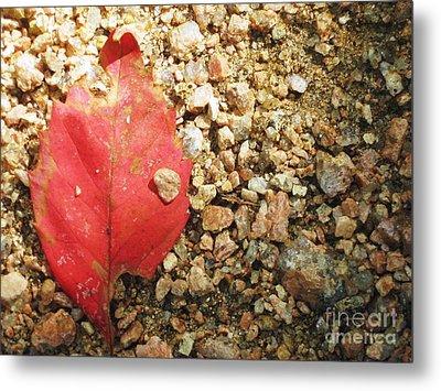 Red Leaf Metal Print by Venus
