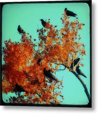 Red Leaves Among The Ravens Metal Print by Gothicrow Images